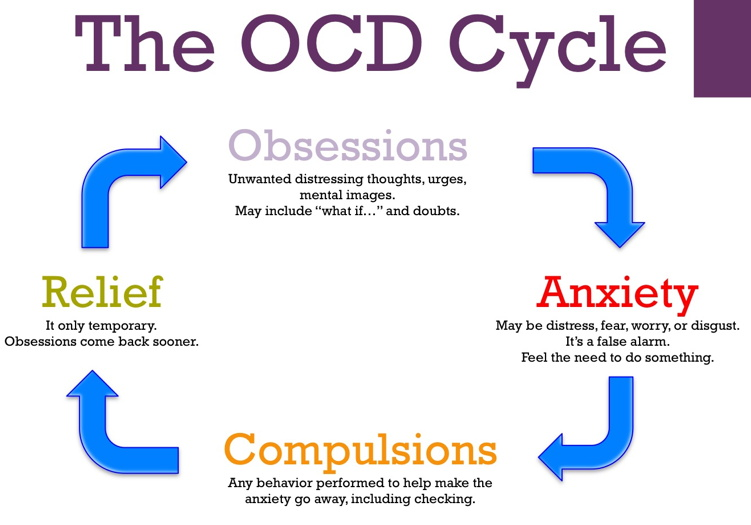 Cycle du trouble obsessif compulsif Obsessive Compulsive Disorder cycle